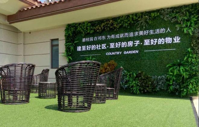 衡阳绿植软装公司,衡阳墙绘公司,衡阳软装公司,衡阳绿色仿真植物装饰